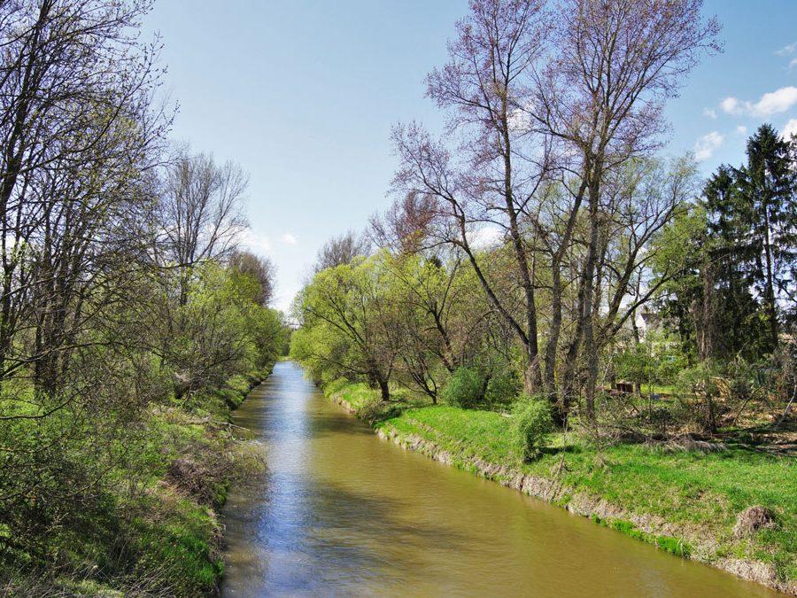 Flussabschnitt der Leitha in Katzelsdorf