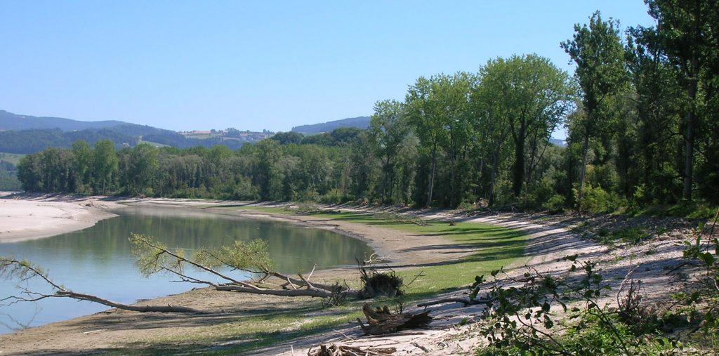 Projekt Donau: Ufer der Oberen Donau in Oberösterreich