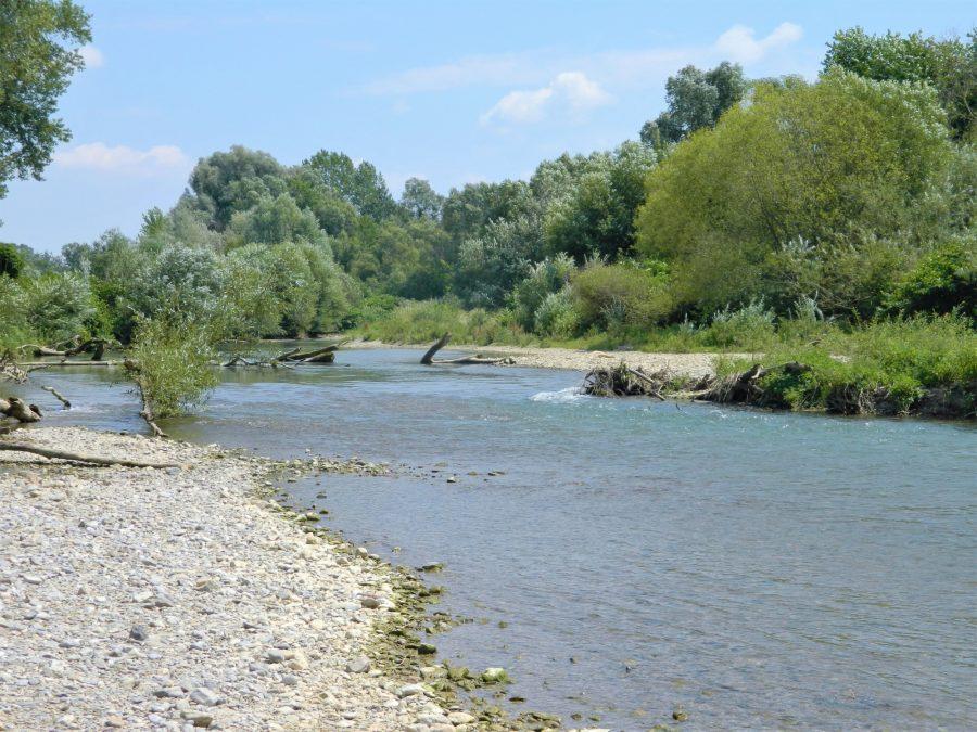 Ein Flussabschnitt der Pielach